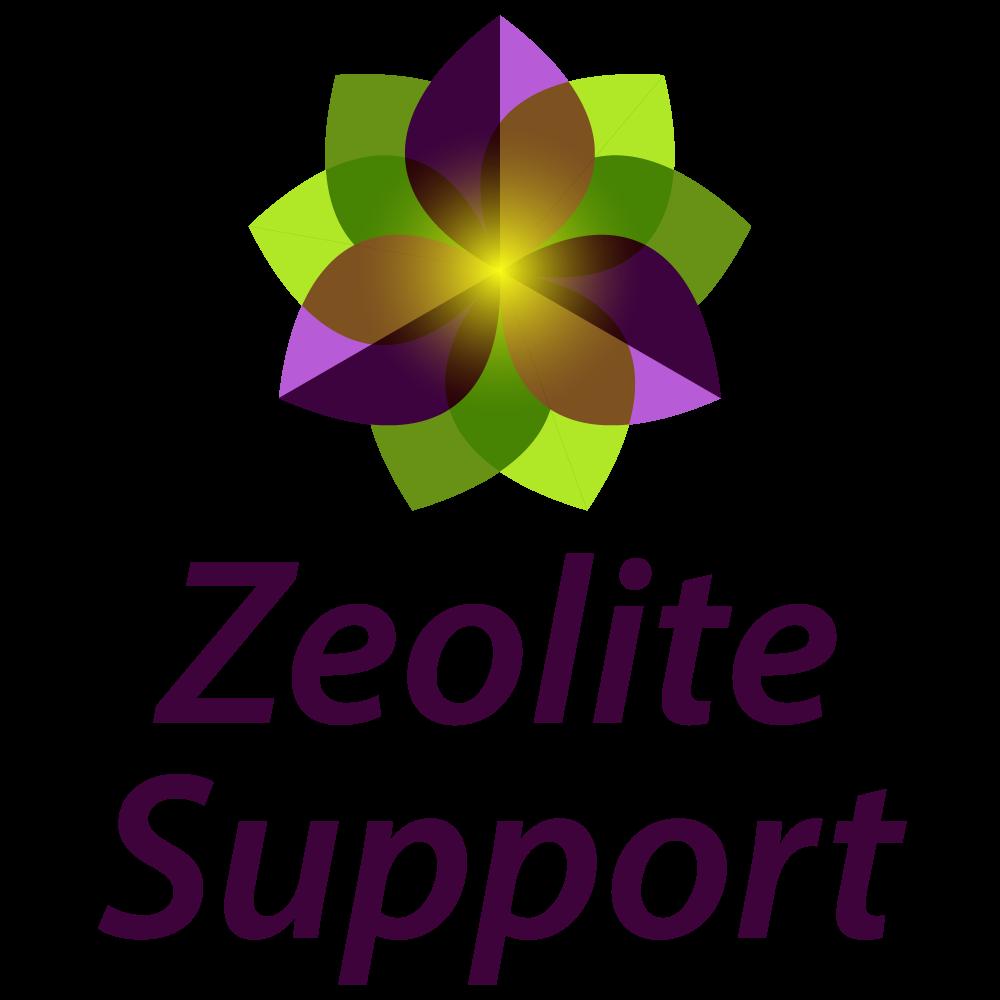 Zeolite Support